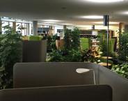 Erste Campus Indoor
