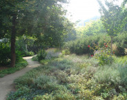Rochuspark