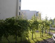 Nursing home Döbling